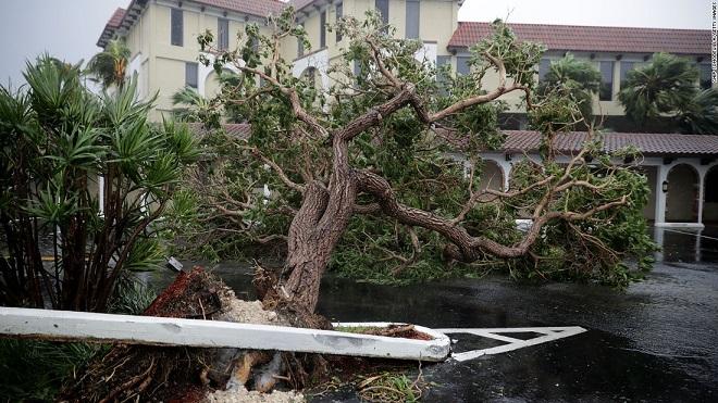 Florida tan hoang xơ xác sau khi siêu bão Irma càn quét - 11