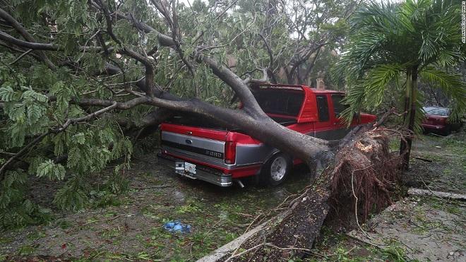 Florida tan hoang xơ xác sau khi siêu bão Irma càn quét - 12