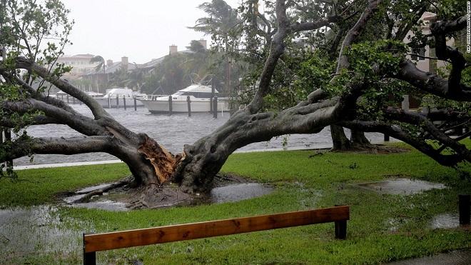 Florida tan hoang xơ xác sau khi siêu bão Irma càn quét - 7
