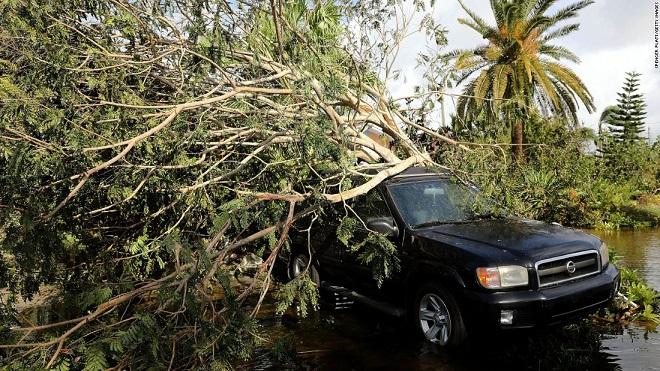 Florida tan hoang xơ xác sau khi siêu bão Irma càn quét - 14