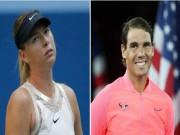 """Thể thao - Fan chê Nadal to mồm, mỹ nhân Sharapova """"đanh đá"""" bênh vực"""