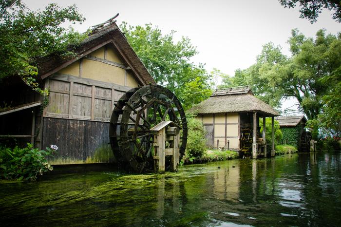 Có một ngôi làng xanh mát, trong lành và bình yên đến lạ ở Nhật Bản - 3