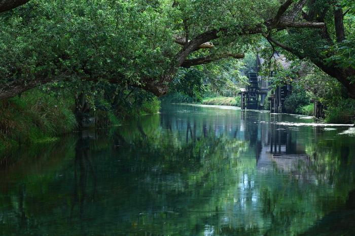 Có một ngôi làng xanh mát, trong lành và bình yên đến lạ ở Nhật Bản - 1