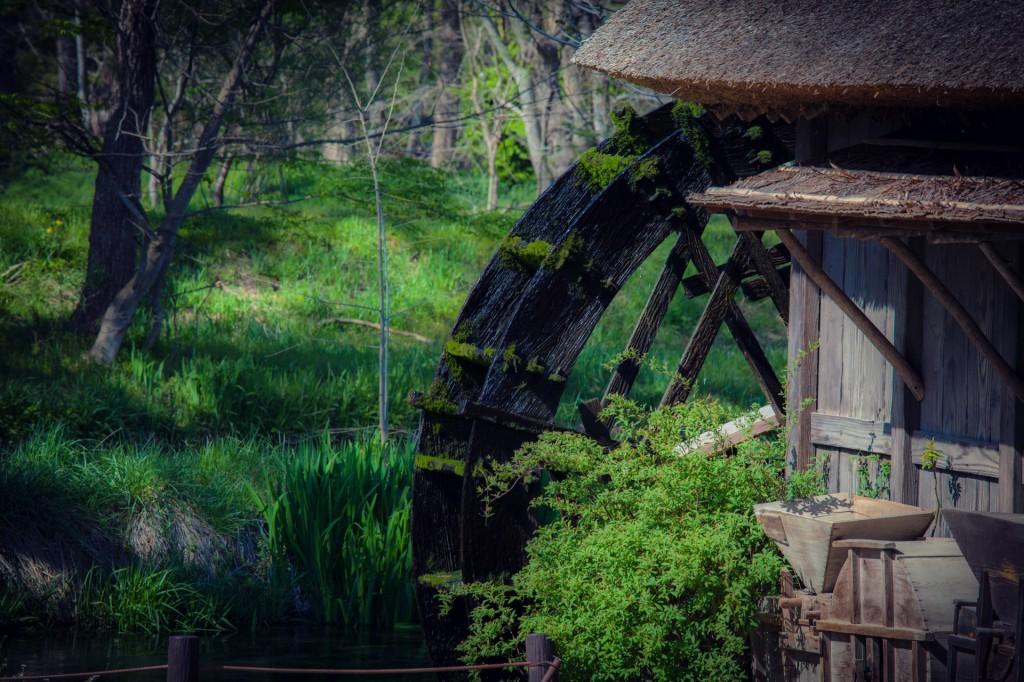 Có một ngôi làng xanh mát, trong lành và bình yên đến lạ ở Nhật Bản - 4