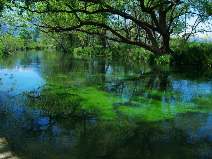 Có một ngôi làng xanh mát, trong lành và bình yên đến lạ ở Nhật Bản - 7