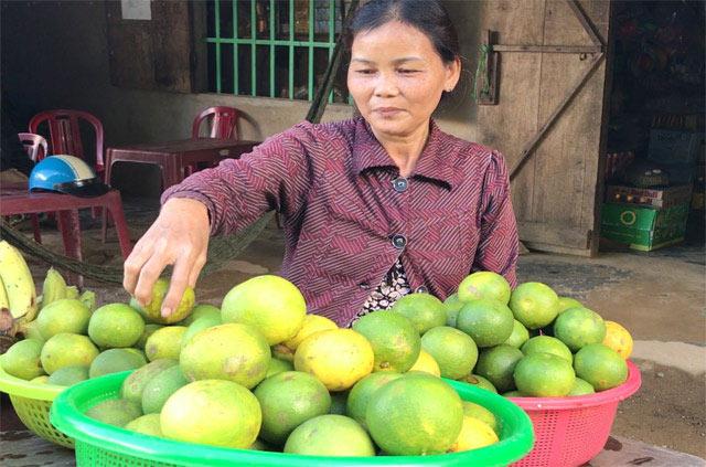 """""""Lộc rừng"""": Độc đáo trái hường vị ngon khó cưỡng chuẩn sạch 100% - 4"""