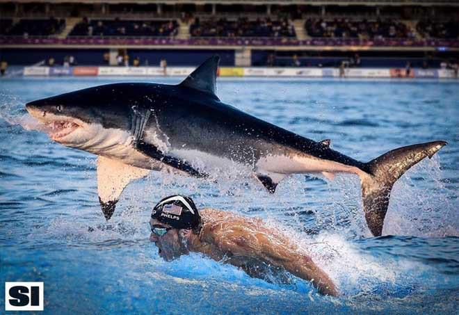 M.Phelps đua với cá mập, đấu McGregor: Khán giả sốc lần 2 - 1