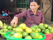 """""""Lộc rừng"""": Độc đáo trái hường vị ngon khó cưỡng chuẩn sạch 100%"""