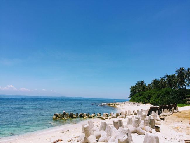 Bãi cái rất trắng, rặng dừa xanh nghiêng mình hướng ra biển.  Tham khảo thêm Kinh nghiệm du lịch đảo Lý Sơn.