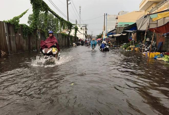 Bão số 10 bất ngờ gây mưa lớn, cây đổ, đường ngập ở TP.HCM - 4