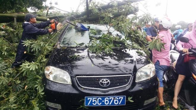 CẬP NHẬT bão số 10 ngày 14/9: Bão chưa đổ bộ đã có 2 người chết, mất tích - 10