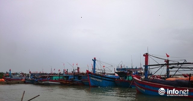 Siêu bão số 10 áp sát đất liền: Toàn bộ học sinh Quảng Trị, Huế nghỉ học - 3