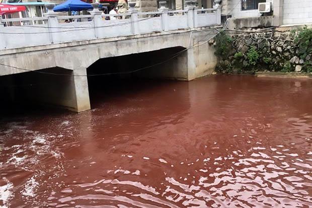 Dòng sông bất ngờ nhuộm đỏ máu tại thành phố Trung Quốc - 2