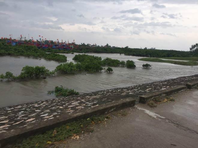 CẬP NHẬT bão số 10 ngày 15/9: Bão sang Lào sau 6 giờ quần thảo miền Trung - 5