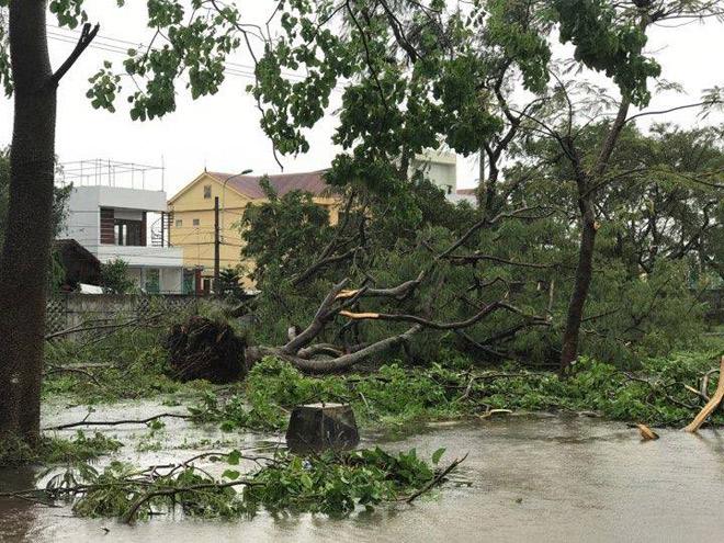 Nhìn lại sức tàn phá khủng khiếp của bão số 10 khi đổ bộ miền Trung - 7