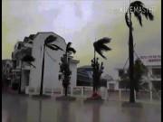 """Bản tin thời tiết 9h30: Bão số 10 bắt đầu """"oanh tạc"""" vùng biển Hà Tĩnh-Quảng Trị"""