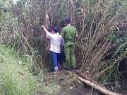 An ninh Xã hội - Tin mới nhất vụ bé gái 13 tuổi bị giết, chôn xác trong lùm sậy