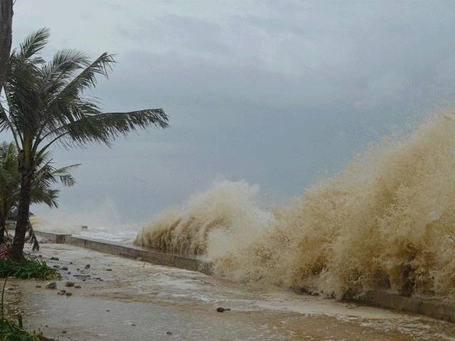 Thiệt hại nặng nề sau bão, Thủ tướng họp khẩn khắc phục hậu quả - 3