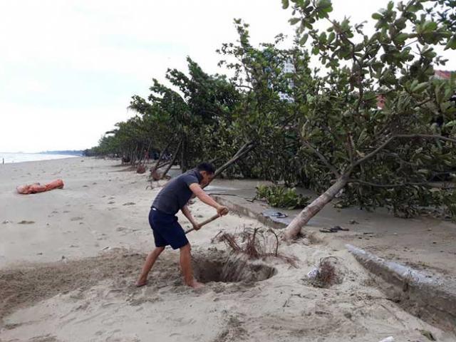 Sau bão số 10: Cát phủ kín khu du lịch Cửa Lò, đê kè ven biển Quất Lâm tan nát