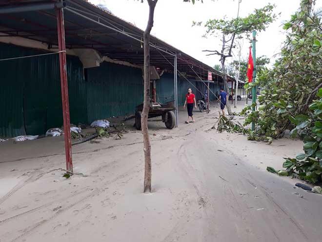 Sau bão số 10: Cát phủ kín khu du lịch Cửa Lò, đê kè ven biển Quất Lâm tan nát - 8