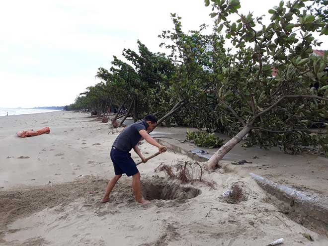 Sau bão số 10: Cát phủ kín khu du lịch Cửa Lò, đê kè ven biển Quất Lâm tan nát - 10