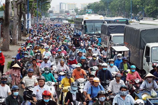 """Xóa sổ """"chợ"""" sinh vật cảnh lớn nhất SG, giao thông tê liệt từ sáng đến trưa - 1"""
