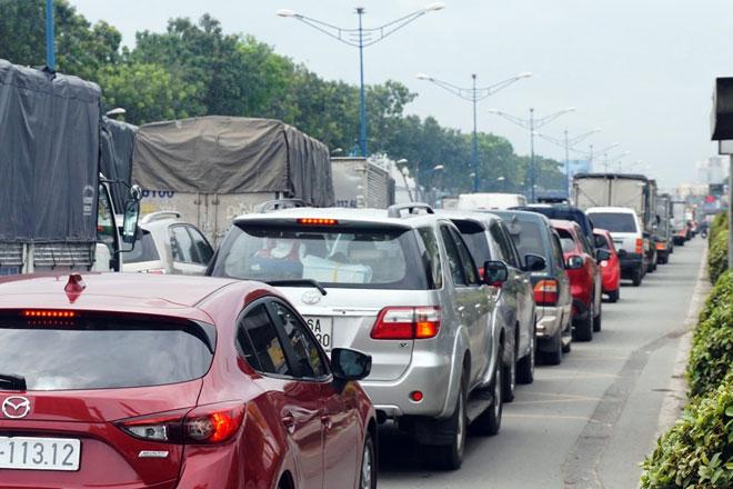 """Xóa sổ """"chợ"""" sinh vật cảnh lớn nhất SG, giao thông tê liệt từ sáng đến trưa - 7"""
