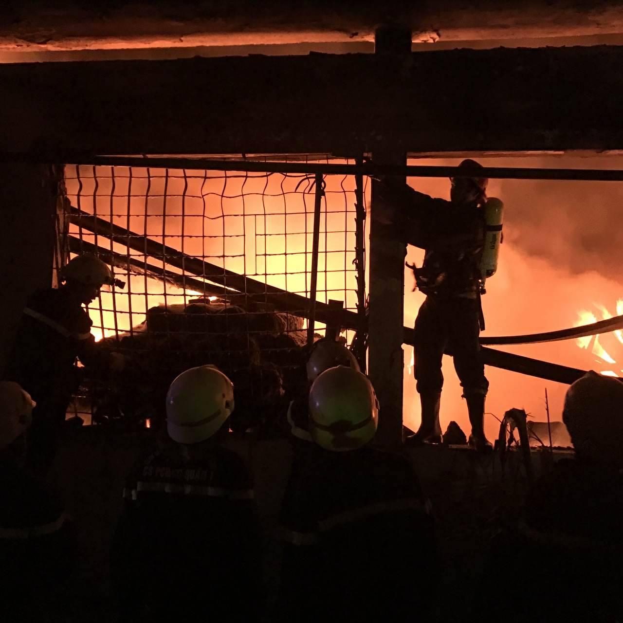 """Ảnh: Cả trăm cảnh sát vật lộn với """"giặc lửa"""" tại KCN Tân Bình - 6"""