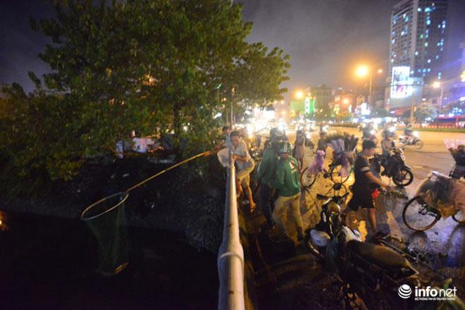 Người Hà Nội đổ xô bắt cá dưới sông Tô Lịch sau cơn mưa lớn - 1