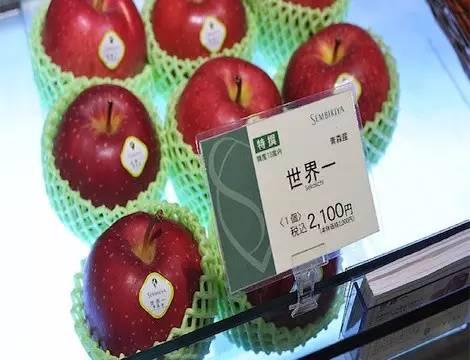 Những loại quả đắt như iPhone X trong giới ẩm thực - 5