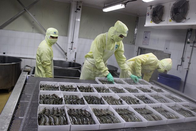 Xuất khẩu tôm vào Mỹ giảm kể từ thời Tổng thống Donald Trump - 1