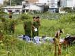 Phát hiện thi thể trẻ sơ sinh trong bãi đất trống ở SG