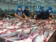 """30 năm phát triển, xuất khẩu 2 tỷ USD, cá tra Việt vẫn """"vô danh"""""""