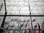 """Hàn Quốc vẫn tiếp tục gửi """"tặng"""" Triều Tiên 8 triệu USD"""
