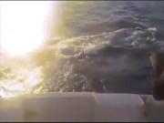 Cá kiếm nhảy lên thuyền, lao thẳng vào đầu người câu