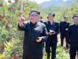 """Hoạt động đầu tiên của Kim Jong-un sau khi Trump dọa """"hủy diệt""""?"""