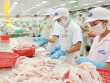 """Mỹ lại tung thêm """"đòn"""" để triệt đường cá tra Việt"""
