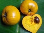 Loại quả người Việt để rụng đầy gốc, ở nước ngoài có giá 1.5triệu/kg