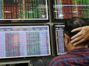 Cổ phiếu không mua nổi ly trà đá, nhà đầu tư khóc ròng