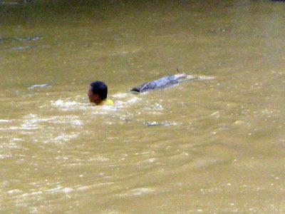 Những hình ảnh về lũ dữ ở Hương Sơn - 9