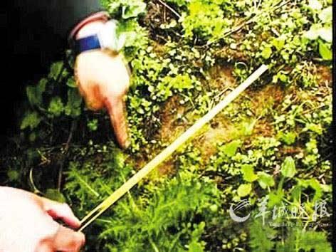 """""""Người rừng"""" gây xôn xao dư luận Trung Quốc - 1"""