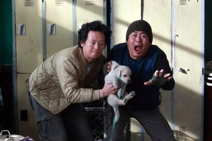 Cuộc phiêu lưu kỳ thú của cún con siêu quậy - 8