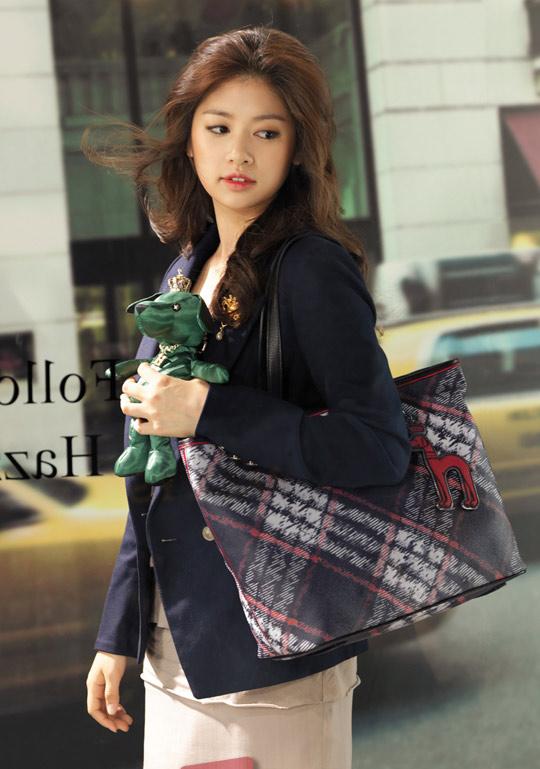 Chọn túi xách kiêu kỳ như Sao Hàn - 14