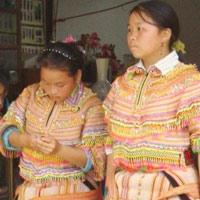 Hàng trăm phụ nữ Mông mất tích