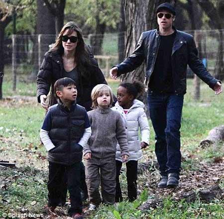 Angelina Jolie: Yêu Brad không vì vẻ ngoài - 4