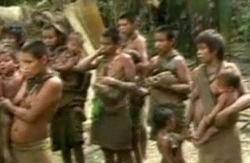 Phát tích bộ lạc người da đỏ mất tích trong rừng Amazon - 3