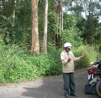 Kon Tum: Lâm tặc băm nát rừng gỗ trắc - 5