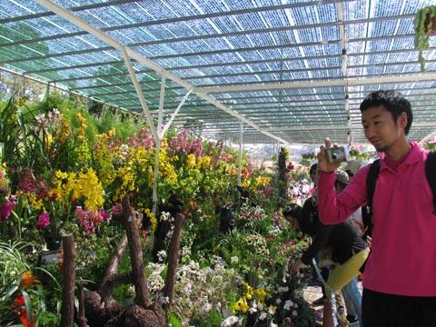 Kỷ lục Việt Nam: Nơi trồng nhiều hoa nhất - 1