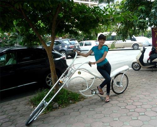 Xe đạp kiểu dáng Harley Davidson độc nhất Việt Nam - 7
