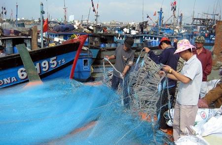 Kỹ thuật đánh bắt mới của ngư dân Đà Nẵng - 2